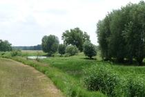 Ferienhaus Elbe Lenzen Flusslandschaft