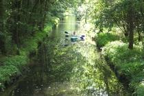 Spreewald Kanu fahren