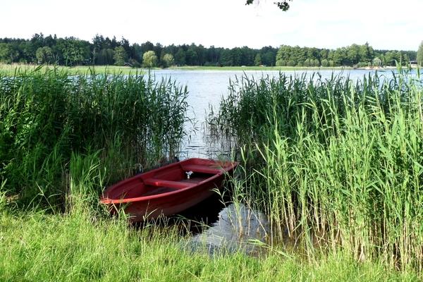 Fürstenberg Havel Röblinsee Boot im Schilf