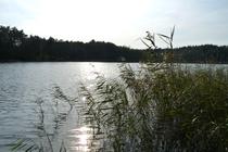 Ferienhaus Templin am See See