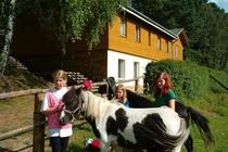 Ferienhaus Boitzenburger Land Thomsdorf Sommerland Ponny
