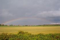 Ferienhaus Boitzenburger Land Thomsdorf Sommerland Regenbogen