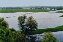 Ferienhaus Elbe Wootz Flusslandschaft