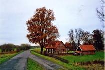 Ferienhaus Elbe Wootz Garten Grundstück