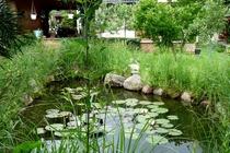 Ferienwohnung Stechlin Gartenteich